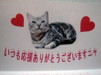akira_02.jpg